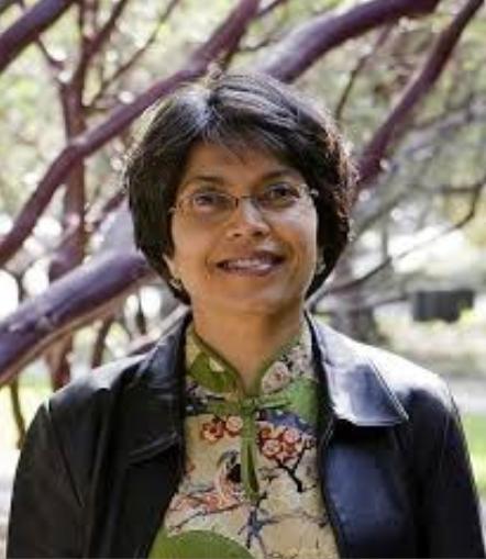 Remembering Saba Mahmood:  Re-understanding the Women's Mosque Movement