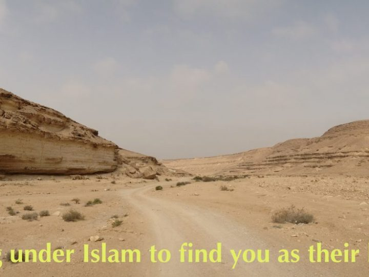 Living water in the desert