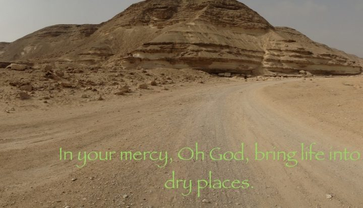 Life into dry places
